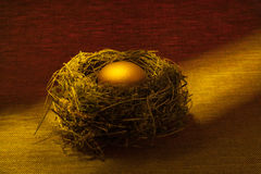 Birds nest with Gold Nest Egg. Real birds nest caught in a ray of light with a Gold Nest Egg royalty free stock photos