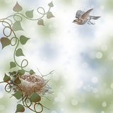 Birds in a Nest Graphic Background Royalty Free Stock Photos