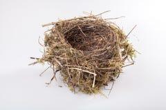 Birds nest. Real birds nest on white background royalty free stock image