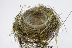 Birds Nest on white background Stock Photos