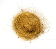 birds nest woven from grass and hair Royalty Free Stock Image