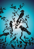Birds in the nocturnal stoppin. G,vector Stock Photo