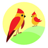 Birds. Сolor illustration in circle Royalty Free Stock Images