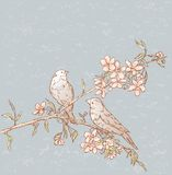 Birds On A Blooming Branch Royalty Free Stock Photos
