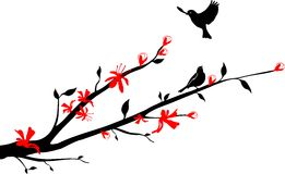Birds on an Oriental cherry branch stock illustration