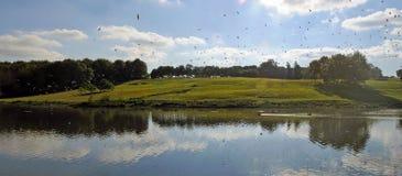 Birds over the lake Royalty Free Stock Photos