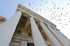 Birds over the Romanian Atheneum Royalty Free Stock Photography