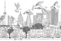 Birds over Toronto Stock Photography