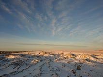 Birds over Winter Landscape Stock Photo