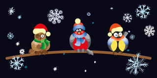 Birds and owls in winter forest . Stock Images