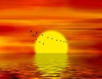 Birds of passage Stock Photo