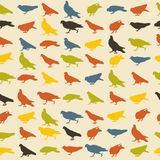 Birds pattern Royalty Free Stock Photography