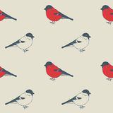 Birds pattern. Seamless  hand-drawing pattern with bids Stock Images