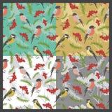 Birds patterns set Stock Photos