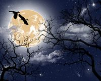 Birds and planet on the background of the night sky royalty free illustration