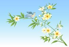 Birds on a plumeria tree Stock Photo