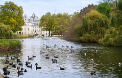 Birds on pond with fountain, St. James park Stock Image
