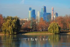 Birds on the pond. Moscow City Business Center. Stock Image