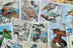Birds on postage stamps Stock Photo