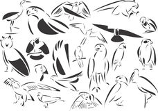 Birds Predators. 20 themed EPS images of predatory birds. The number of vector nodes is absolute minimum. The images are very easy to use and edit and are Stock Photo