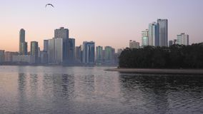 Birds quickly fly low over the lake. The skyscrapers of a big city on the horizon behind the water. In the morning of. The big city the sun rises. Outdoors stock footage
