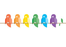 Birds in rainbow colors sitting on a tree branch.  Stock Images