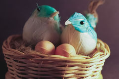 Birds of recycled material in a nest stock images