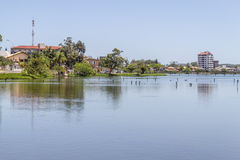 Birds resting at Violao lake in Torres Stock Photography