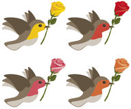Birds with roses. Birds carrying yellow, red, pink and orange roses isolated on white Stock Images