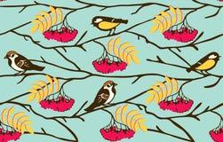 Birds on the rowan branch seamless Stock Photography