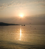 Birds, Sea And Sunrise Stock Image