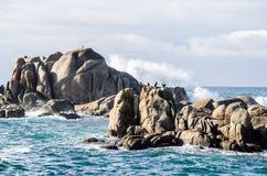 Birds on sea rock. Big waves crashing on rocks coastline. Birds on sea rock. Big waves crashing at coastline. Sunny day Royalty Free Stock Images