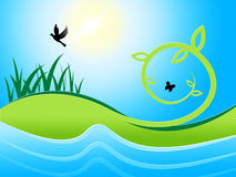 Birds Sea Shows Water Grass And Meadow. Sea Birds Indicating Green Grass And Lawn vector illustration