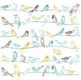 Birds Seamless Background Stock Photo