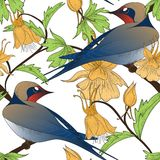 Birds seamless pattern Stock Photos