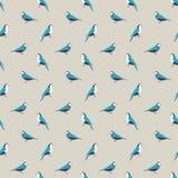 Birds seamless pattern. Stock Photos