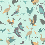 Birds seamless pattern. Vector flat style Royalty Free Stock Photography