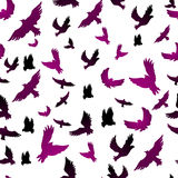 Birds in seamless pattern Stock Photos