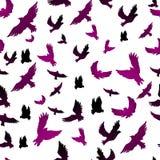 Birds in seamless pattern Stock Photos