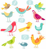 Birds set. Cute colored birds with signs vector illustration Royalty Free Stock Photos