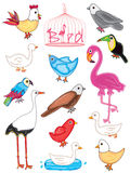 Birds set_eps. Illustration of birds set with design title on white background. --- This .eps file info Version: Illustrator 8 EPS Document: 9 * 12 Inches (Width vector illustration