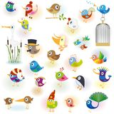 Birds set14 Stock Photo