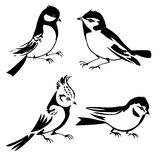 Birds silhouette Royalty Free Stock Photos