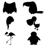 Birds silhouette Stock Images