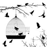 Birds silhouettes and bird cage Royalty Free Stock Images