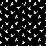 Birds silhouettes - flying seamless pattern. Dove with a red beak and legs Stock Photo