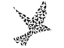 Birds silhouettes group vector Stock Image