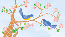 Birds singing on a branch. Vector background. CMYK Stock Photos