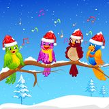 Birds singing Christmas Carol Stock Photo