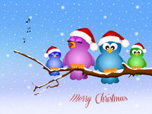 Birds singing at Christmas Stock Photo